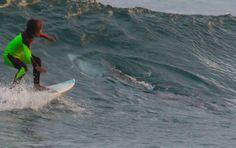 ❝ FOTOS: Un padre capta cómo un tiburón asesino se acerca por sorpresa a su hijo mientras surfea ❞ ↪ Puedes leerlo en: www.divulgaciondmax.com