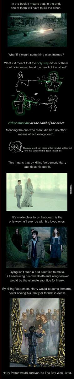 This was my theory too, it would be interesting to continue the story after Harry is 100+ years old...
