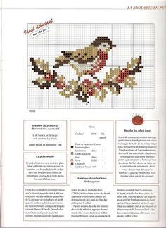 (7) Gallery.ru / Фото #19 - разные птахи - irisha-ira