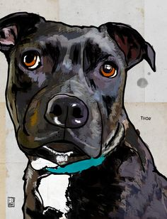 Uplifting So You Want A American Pit Bull Terrier Ideas. Fabulous So You Want A American Pit Bull Terrier Ideas. Art Aquarelle, Funny Drawings, Dog Drawings, Bull Terrier Dog, Bull Dog, Pit Bulls, Dog Paintings, Dog Portraits, Dog Art