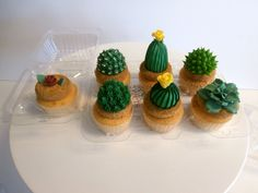 Adorable #cactus #cupcakes from Sweet Treets Bakery! https://www.facebook.com/SweetTreetsBakery