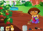 Dora ha bisogno di curare il giardino ma non ha le idee molto chiare sui prodotti da utilizzare. Ha bisogno del tuo aiuto per mantenere prosperose le piante di pomodori.