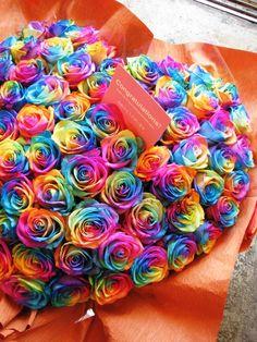 Rainbow Roses, Pretty Roses, Hibiscus, Girly, Sweet, Flowers, Beautiful Scenery, Yahoo, Colors