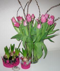 Frühlingsdeko Tulpen Hyazinthen Die_Kinderkueche