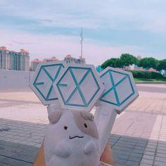 #EXO #lightstickexo #lightstick