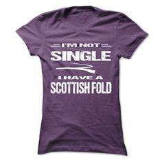 I am not singer. I have Scottish Fold Special Shirt !!! T SHIRT
