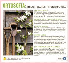 Rimedi naturali: il bicarbonato