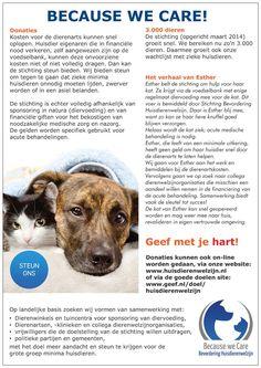 Doneren kan via www.geef.nl/doel/huisdierenwelzijn of  Bel: 0900-HELPONS en kies code 6673. Doneer € 1,30 en breng een MINIMA dier in acute medische nood dichter naar de dierenarts.