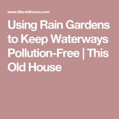 Using Rain Gardens to Keep Waterways Pollution-Free | This Old House