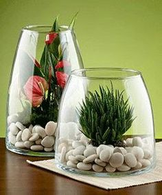 Modern glass plant terrarium design, cheap Green decorating ideas, glass home… Terrarium Design, Garden Terrarium, Succulent Terrarium, Glass Terrarium Ideas, Terranium Ideas, Glass Terrarium Containers, Orchid Terrarium, Terrarium Wedding, Mini Terrarium