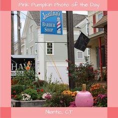#PinkPumpkin #PhotoOfTheDay #SmithsAcresPumpkins #JustinasBarberShop #Niantic Pumpkin Photos, Pink Pumpkins, Barber Shop, Will Smith, Acre, Garden, Shopping, Garten, Lawn And Garden