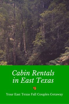 If you're planning a fall getaway for you and your significant other, consider how much fun cabin rentals in East Texas can be.  No matter where in Texas you're from - or where in the United States you're from - East Texas is the perfect place for a cool-weather vacation for couples who ...