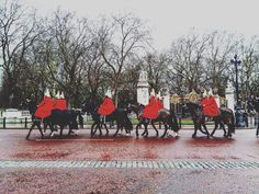 When in London #london #horse #royal  #queen #rainnyday #londoncity #photography #instagood #instadaily #instagram #landscape #trip #instamood #hydepark #buckinghampalace #westminster by olgahtipota