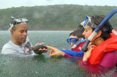 Ven a descubrir la vida marina de #cabezasdesanjuan #paralanaturaleza