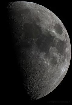 Moon Mosaic, Konstantinos Stavropoulos