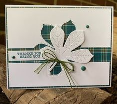 Leaf Cards, Thanksgiving Cards, Stampin Up Cards, Autumn Leaves, Thank You Cards, Embellishments, Card Stock, Card Making, Paper Crafts