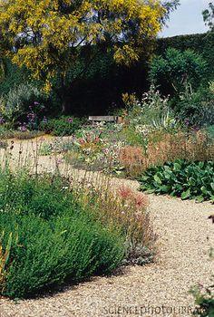 gravel garden. Water conscious