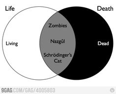 im proud to say i know what Nazgul is :D AND Schrodinger's Cat!