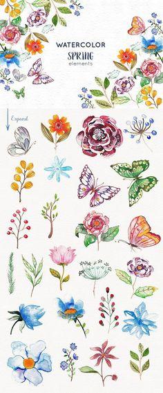 25 Watercolor Spring Elements. Watercolor Flowers