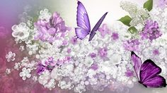 Lilac Predicition - purple, scatter, spring, white flowers, lavender, butterflies,
