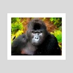 #INPRNT #fine art #print #poster #art Forest And Wildlife, Pet Monkey, Jungle Safari, Print Poster, Fine Art, Art Prints, Portrait, Printed, Gallery
