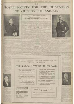 RSPCA advert 17 July, 1936. At that time the Society was evidently promoting no fewer than eleven parliamentary bills to improve animal welfare.