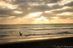 Jacque C Photography Sunset beach