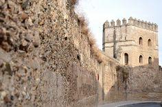 Barcelona Spain, Tour Guide, Nightlife, Mount Rushmore, Tours, Mountains, Travel, Sevilla, Viajes
