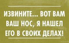 (1) Смешные цитаты (@dethArrud) | Твиттер