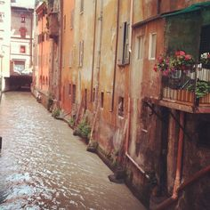A window into Bologna's best kept secret, its canals: Finestra Sul Reno in Via Piella - Instagram by @bushbirdie