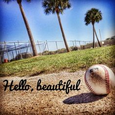 Hello long lost friend. . Baseball is back ladies and gents!!!!!!!!!!