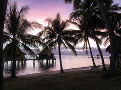 Heaven is a coconut plantation (falling in love with the Kia Ora Resort) http://travelboulevard.be/kia-ora-resort-spa/
