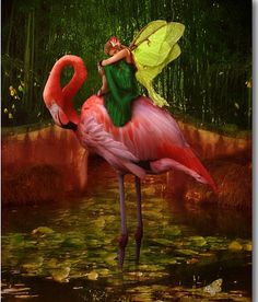 Create a home that delights in imaginative, artful design with this long-lasting wrapped canvas hanging on your gallery wall. This Flamingo Fairy Wrapped Canvas May Arts, Hanging Canvas, Fairy Art, Whimsical Art, Print Artist, Wrapped Canvas, Framed Artwork, Fantasy Art, Fine Art Prints