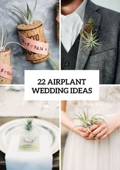 22 Original Ideas To Incorporate Airplants Into Your Wedding - http://www.2016hairstyleideas.com/wedding/22-original-ideas-to-incorporate-airplants-into-your-wedding.html