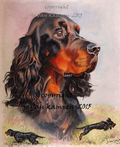 "Gordon setter girl, 14"" watercolour, commission"