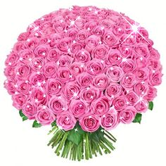Flowers to Dubai has a wide variety of collections of flowers. We send fresh flowers in Dubai at affordable price. Flowers Gif, Beautiful Rose Flowers, Fresh Flowers, Purple Roses, Pink Flowers, Bisous Gif, Rose Violette, Happy Birthday Flower, Rosa Rose