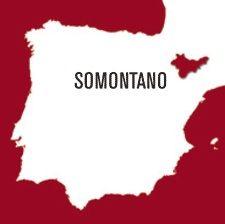 Somontano, tierra de #vinos