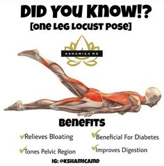 Fitness Workouts, Fitness Facts, Fitness Diet, Yoga Fitness, Health Fitness, Restorative Yoga, Yoga Benefits, Health Facts, Health And Wellbeing