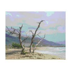 Landscape eliso Margarita Venezuela Impresiones En Lona http://www.zazzle.com/landscape_eliso_maragarita_venezuela_lona-192135998371484554?lang=es