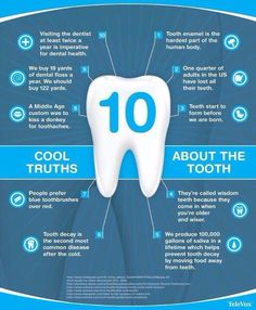 Interesting tooth facts.