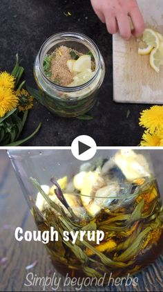 This herbal cough syrup with Ribwort Plantain and Dandelion syrup soothes the throat, eases the symptoms of a dry cough and helps reduce cough irritation. Herbal Cough Syrup, Homemade Cough Syrup, Homemade Deodorant, Herbal Cure, Herbal Remedies, Natural Remedies, Natural Medicine, Herbal Medicine, Ginger Water Benefits