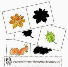 Kleuterklas: Taalactiviteit - Schaduw herkennen thema 'Herfst'