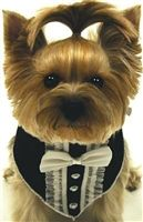 Buy Dog Clothes Online | Big & Small Dog Clothing | Clothes for Dogs