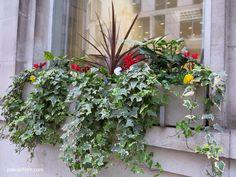 1000 images about jardineras on pinterest - Jardineras con plantas ...