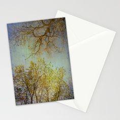 An enchanted look at the  foliage that comforts us, trees, foliage, seasons