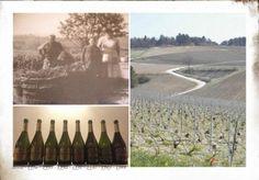 Michel Furdyna – la verticale dal 2002 al 1988 di Champagne Brut Prestige http://intothewine.org/2016/04/04/michel-furdyna-la-verticale-dal-2002-al-1988-champagne-brut-prestige/