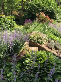You can create a beautiful front yard garden by repeating plants, using a few colors and changing the textures of plants near each other. Find out…