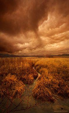 """Absence of Season""Wisconsin Horizons By Phil Koch.http://phil-koch.artistwebsites.com"