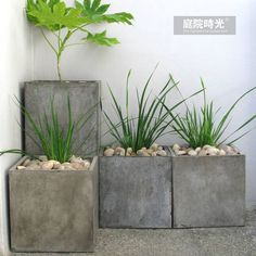 【庭院时光】新款超大方形水泥花盆/落地卷口盆/简约工业风