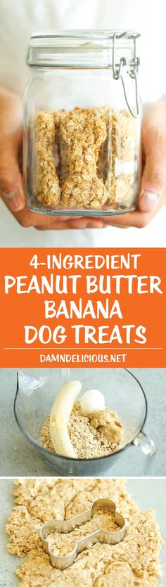 Peanut Butter Banana Dog Treats - All you need is 4 ingredients for these hypoallergenic treats! And the coconut oil makes these so HEALTHY for your pup! ~ Damn Delicious